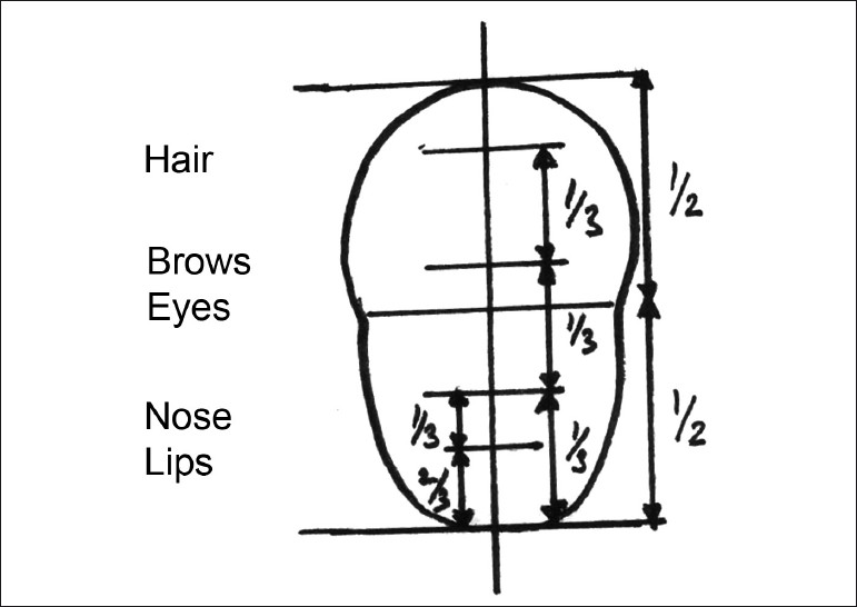 Figure 1: Horizontal dimensions of face