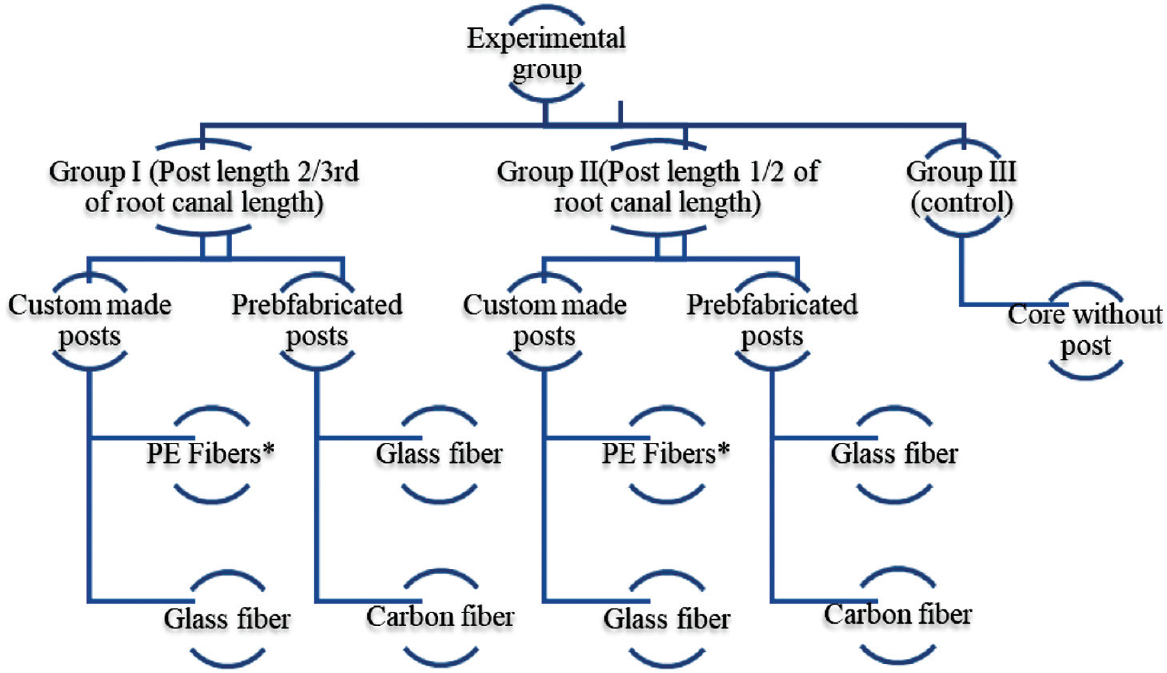 Figure 1: Schematic representation of experimental groups. *Polyethylene-woven fiber